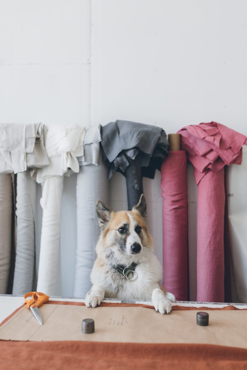 The Linenfox studio dog poses with rolls of fabric