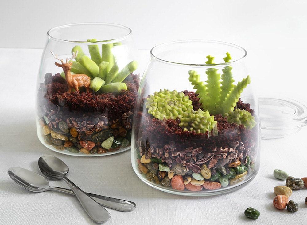DIY edible terrarium project by Heather Baird
