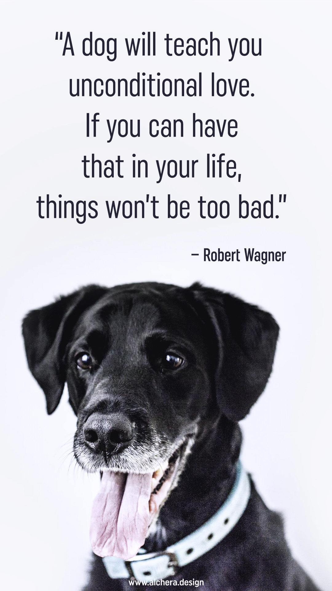 A dog will teach you unconditional love. If you can have that in your life, things wont be too bad.  Quote by Robert Wagner.