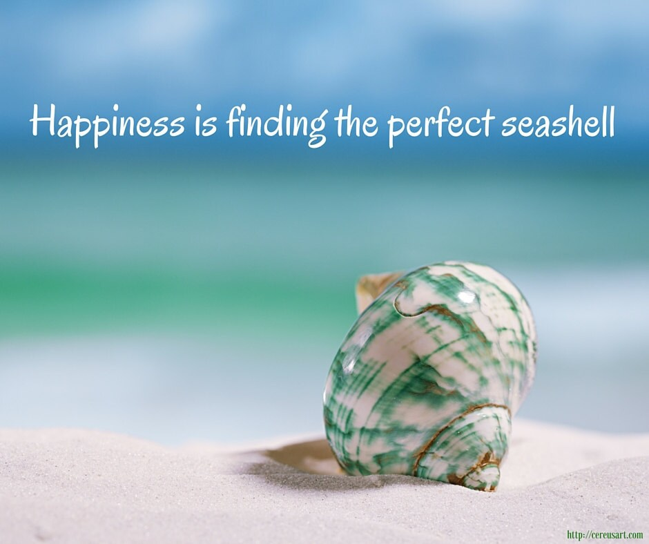 Happiness is finding the perfect seashell