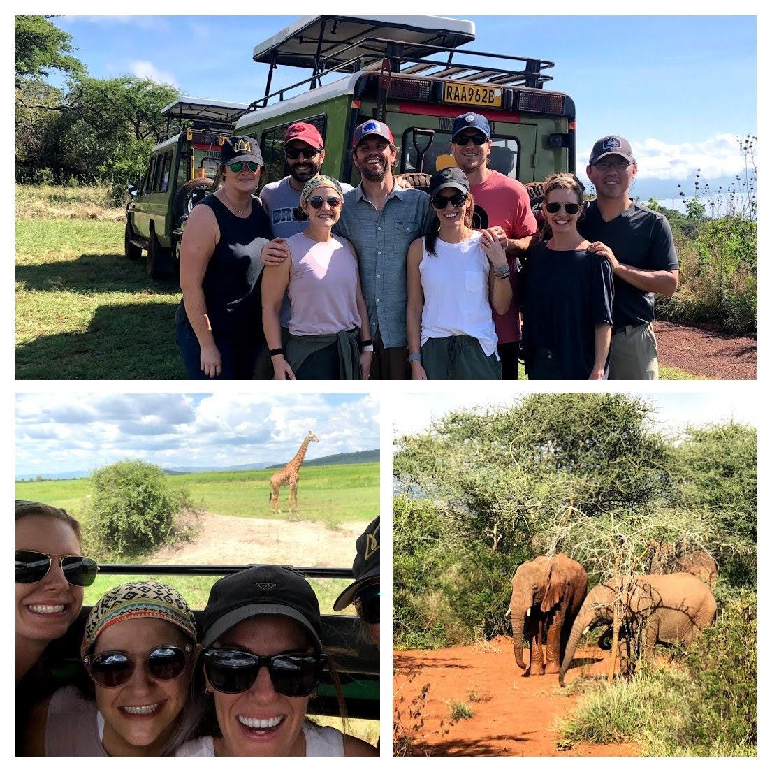 milkandhoney_safari