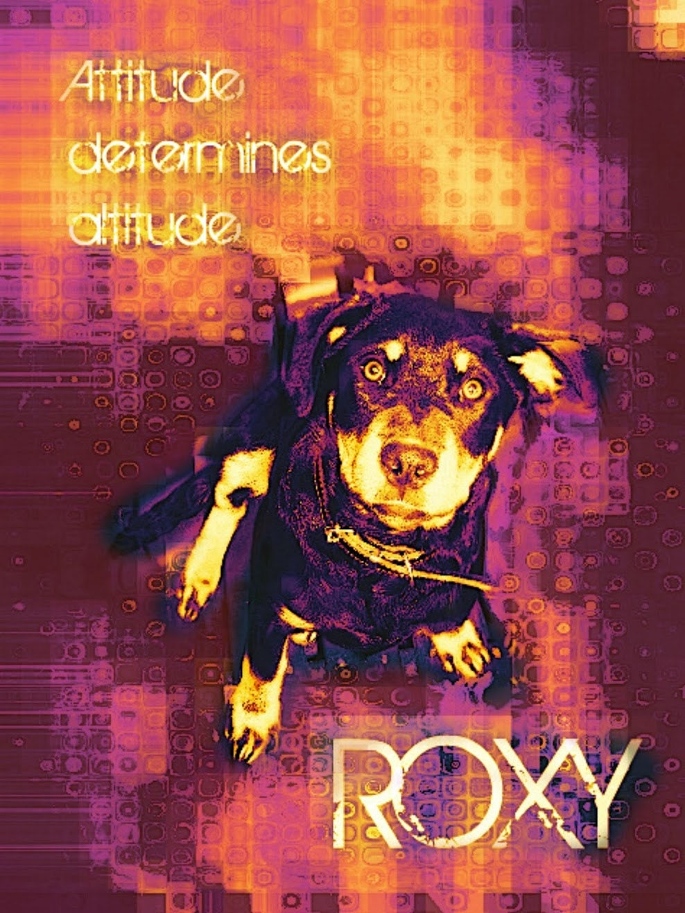 Roxy artwork