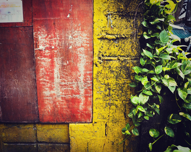 A rustic gate post