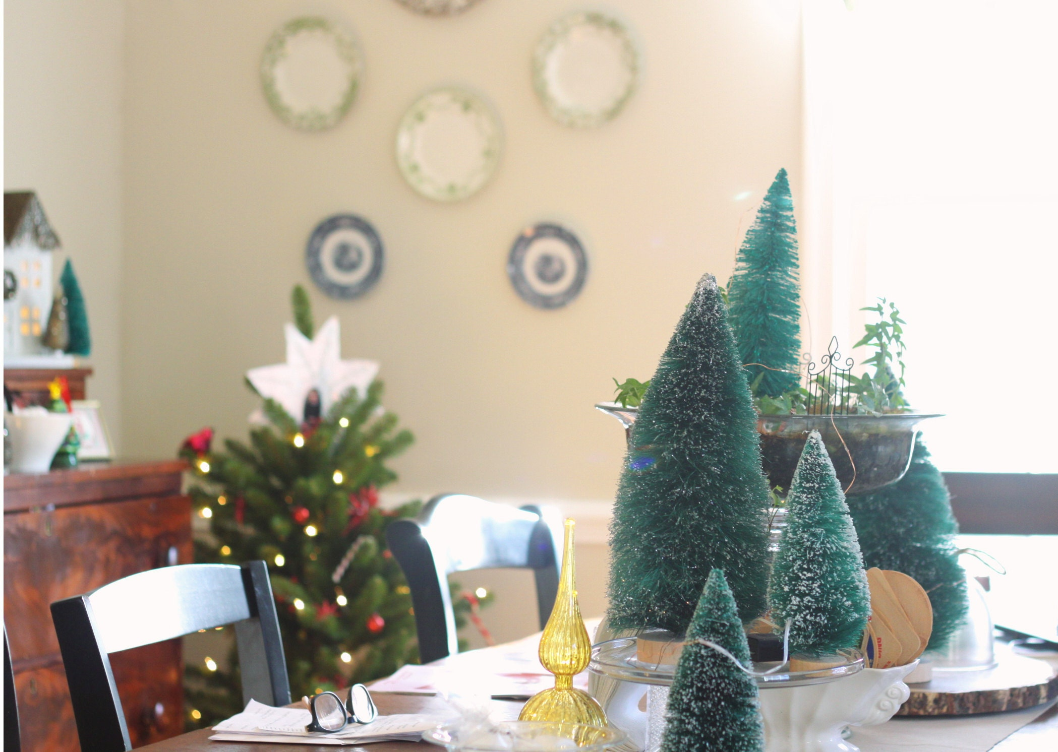 Bottle Brush Tree Decorating Ideas in the dining room