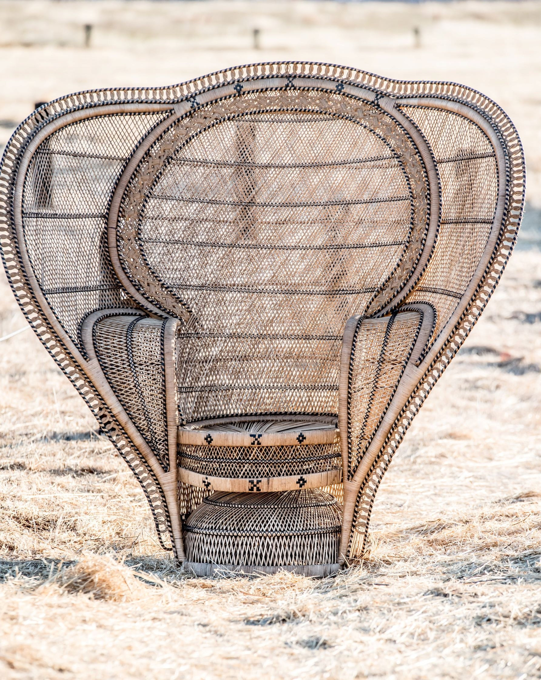 White Elephant Co. XL Cobra Peacock Chair