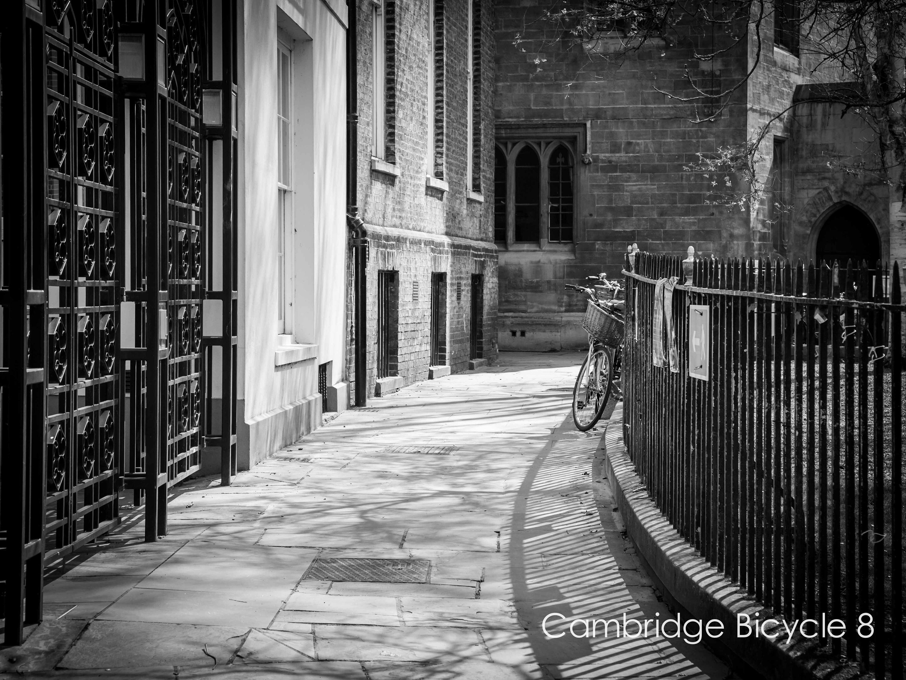 black and white cambridge wall art of bicycle parked against railings- limited edition unframed prints and ready to hang wall art