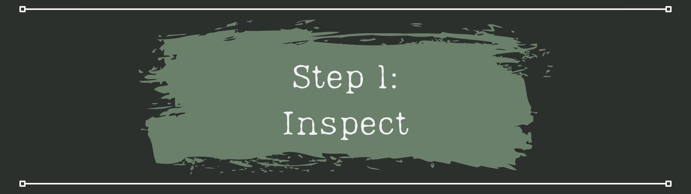 Step 1 - Inspect