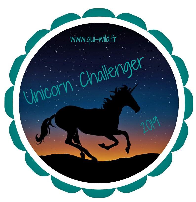 Unicorn challenge 2019 - bullet journal - blog