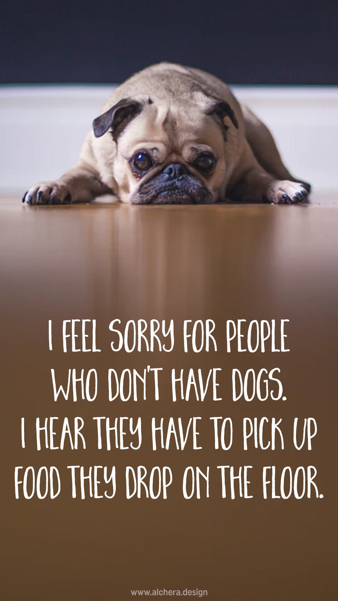 I feel sorry for people who dont have dogs; I hear they have to pick up their own food if they drop it on the floor.