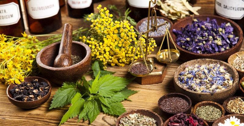 Personal Herbal Plan