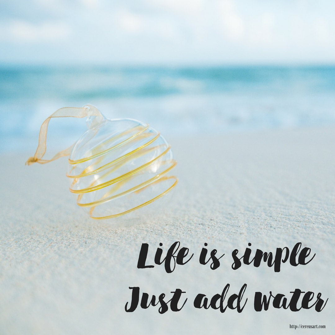 Life is simple, just add water