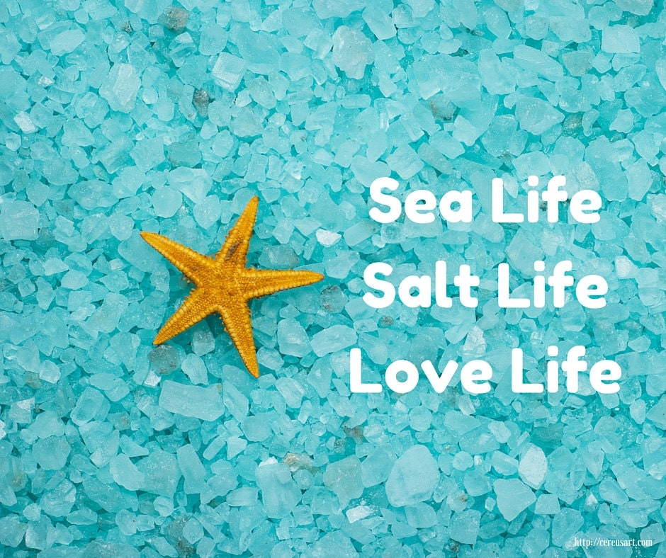 Sea Life - Salt Life - Love Life