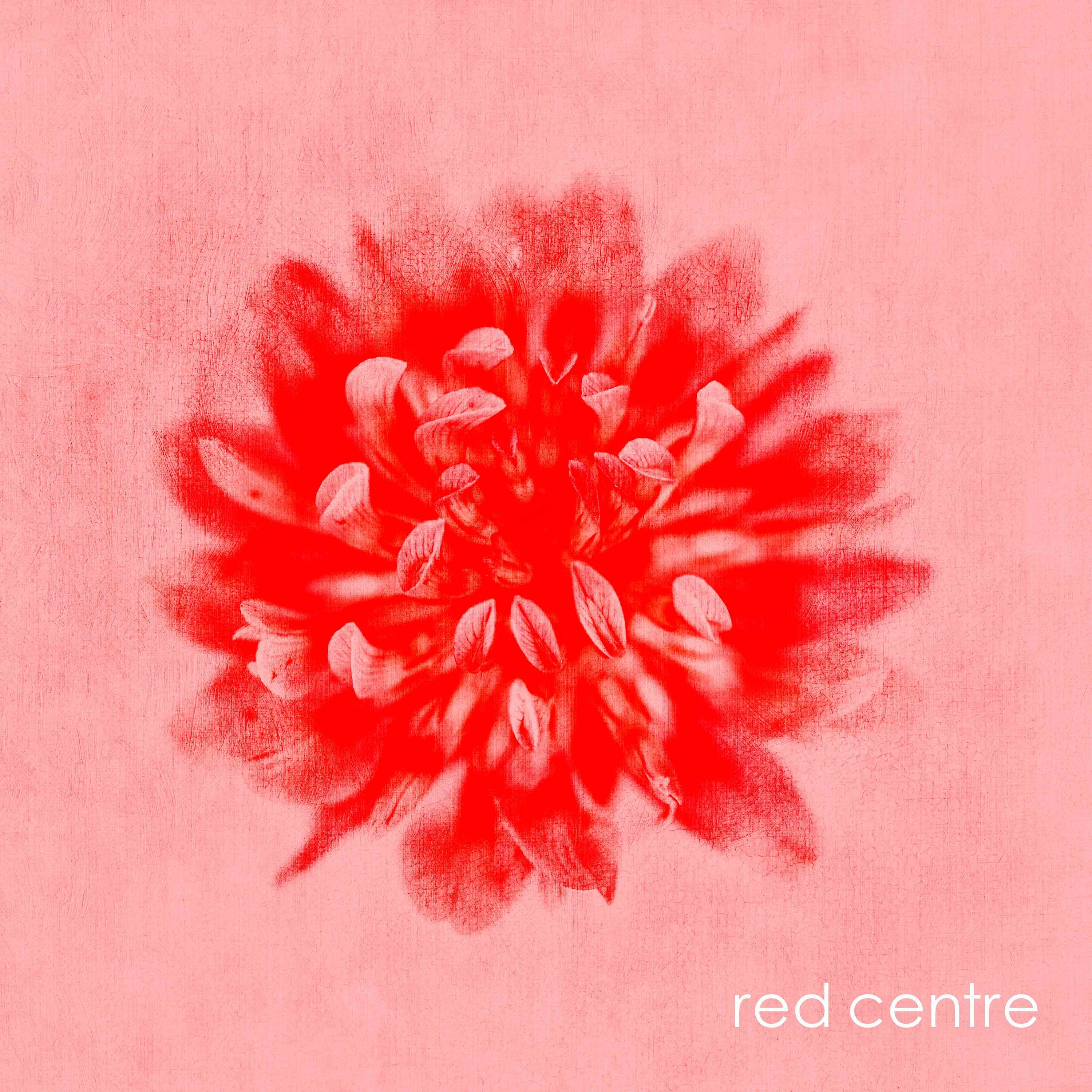 red and pink floral canvas wall art- unframed limited edition prints on the affordable art fair- custom sizes- ready to hang floral art