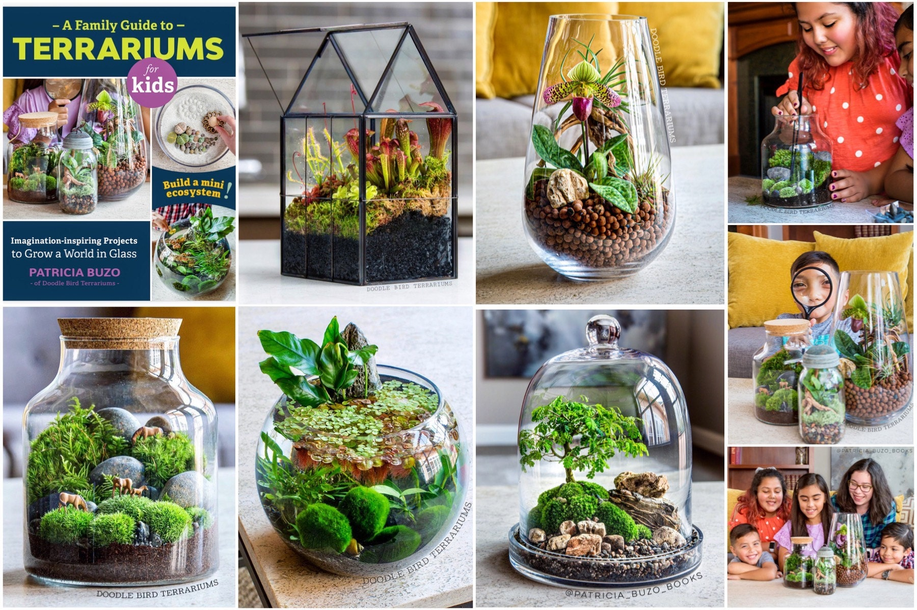 Terrarium projects featured in the book: A Family Guide to Terrariums