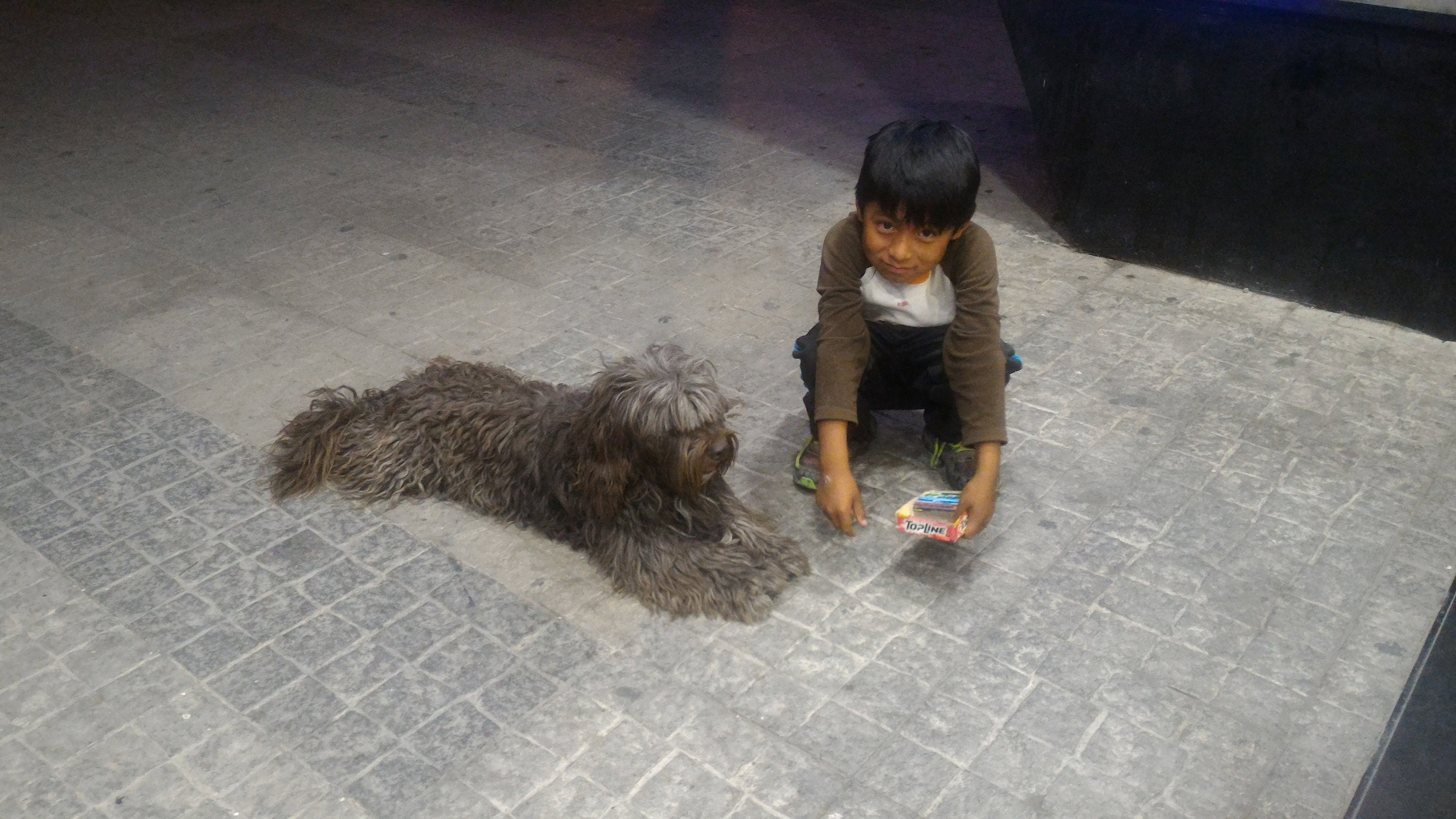 a lesson on gratefulness, taught by a 9 year old boy and his dog