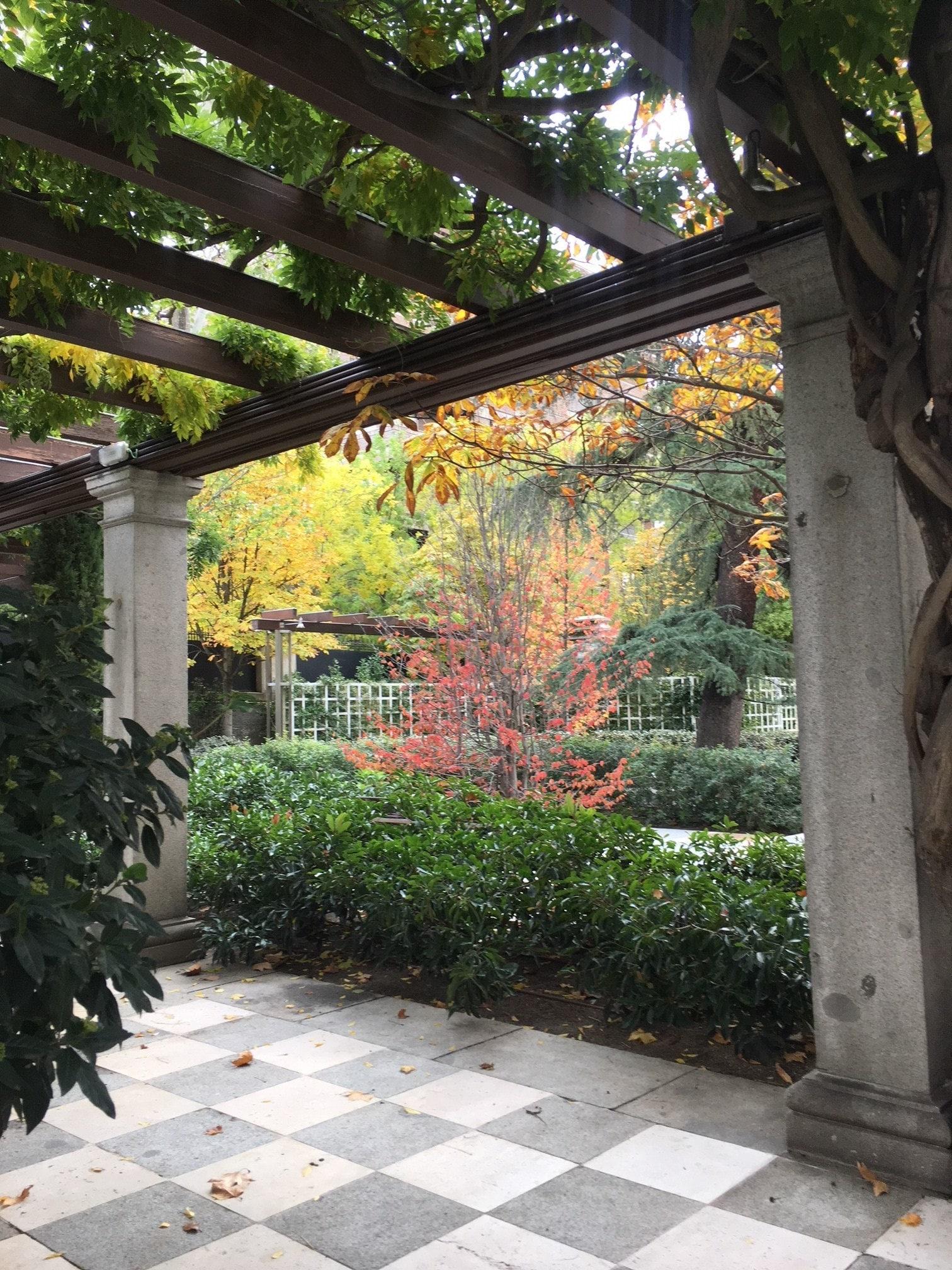 Patio. Fundación Juan March. Madrid. otoño 2018
