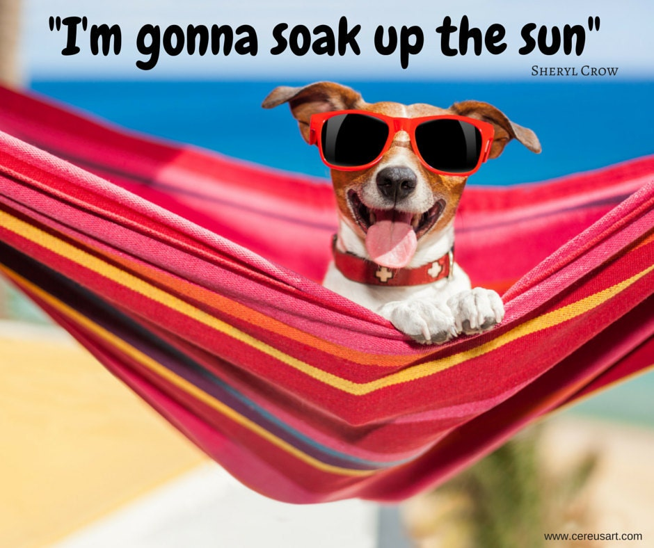 Im gonna soak up the sun - Sheryl Crow