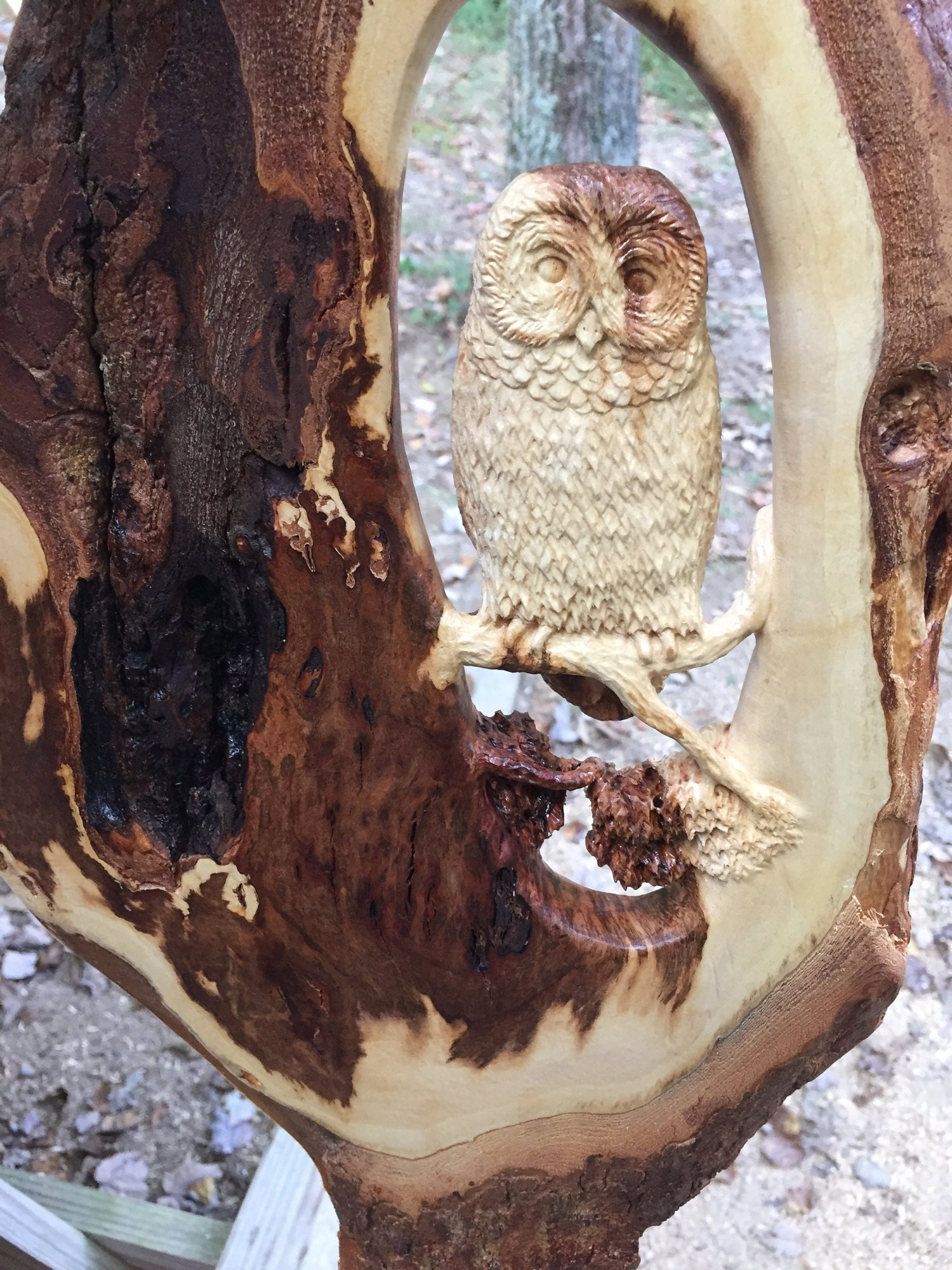 Pierced relief owl carving beginning to end