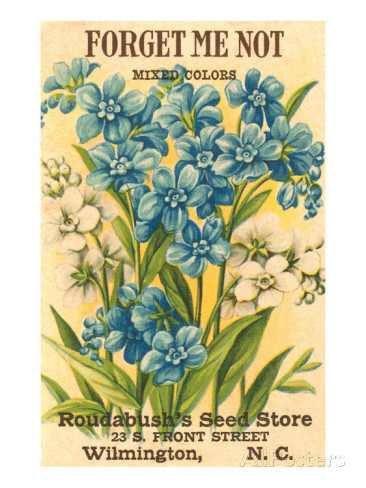 Free Vintage Flower Garden Graphics