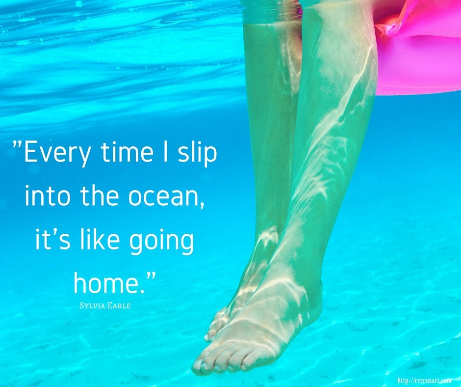 Every time I slip into the ocean, its like going home.