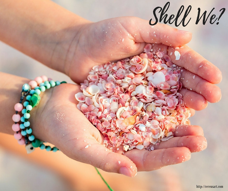 Shell we?
