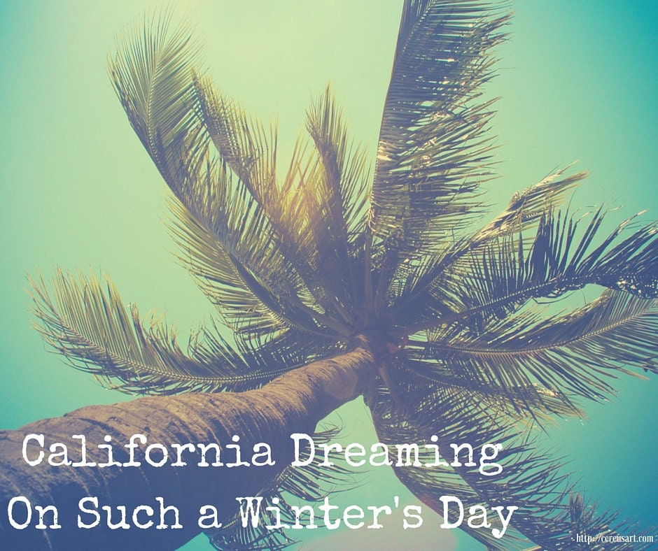 California Dreaming on such a winters day