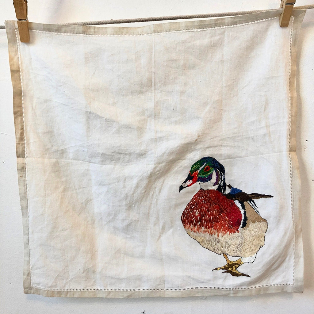 Aix sponsa (Wood Duck), Hanging them out to Dry Series