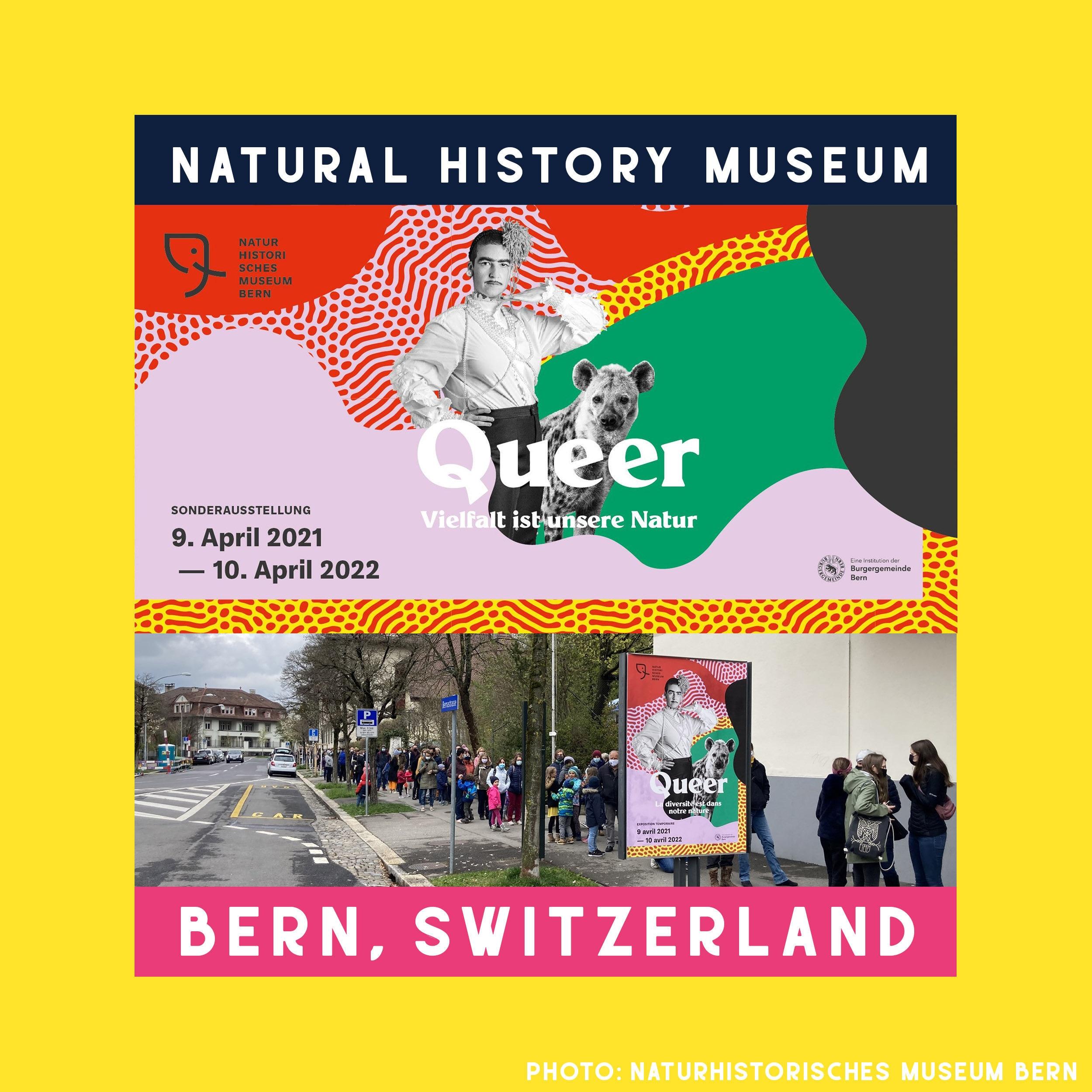 Natural History Museum of Bern The Pin Prick Museum Shop Switzerland LGBT Merchandise