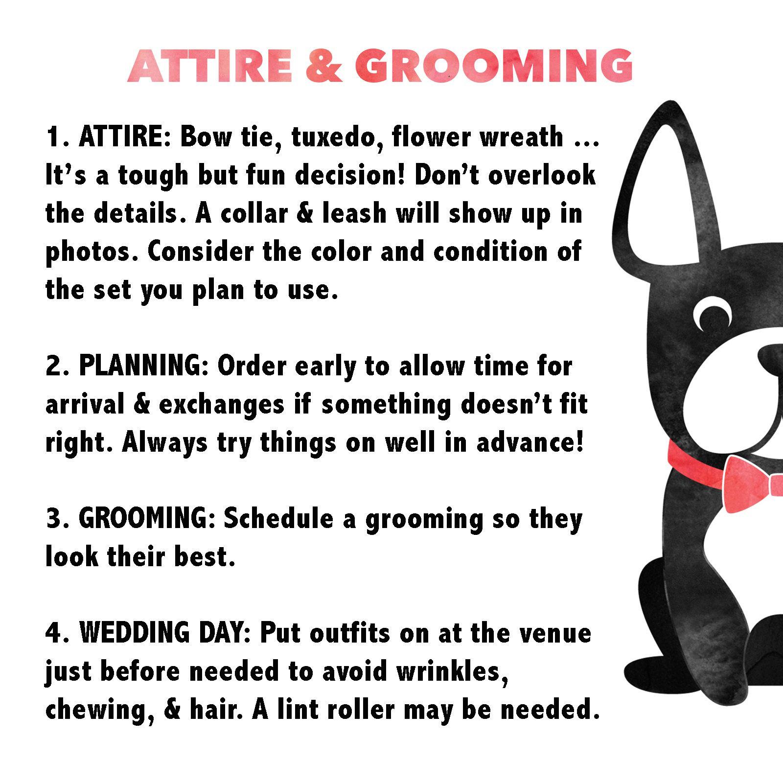 Attire & Grooming
