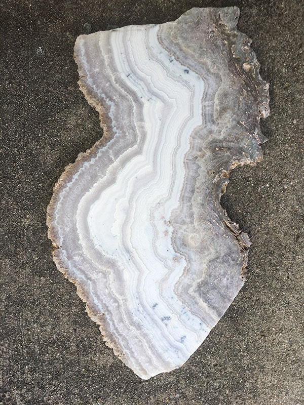 A 12 slab of sowbelly agate available to include in a table top