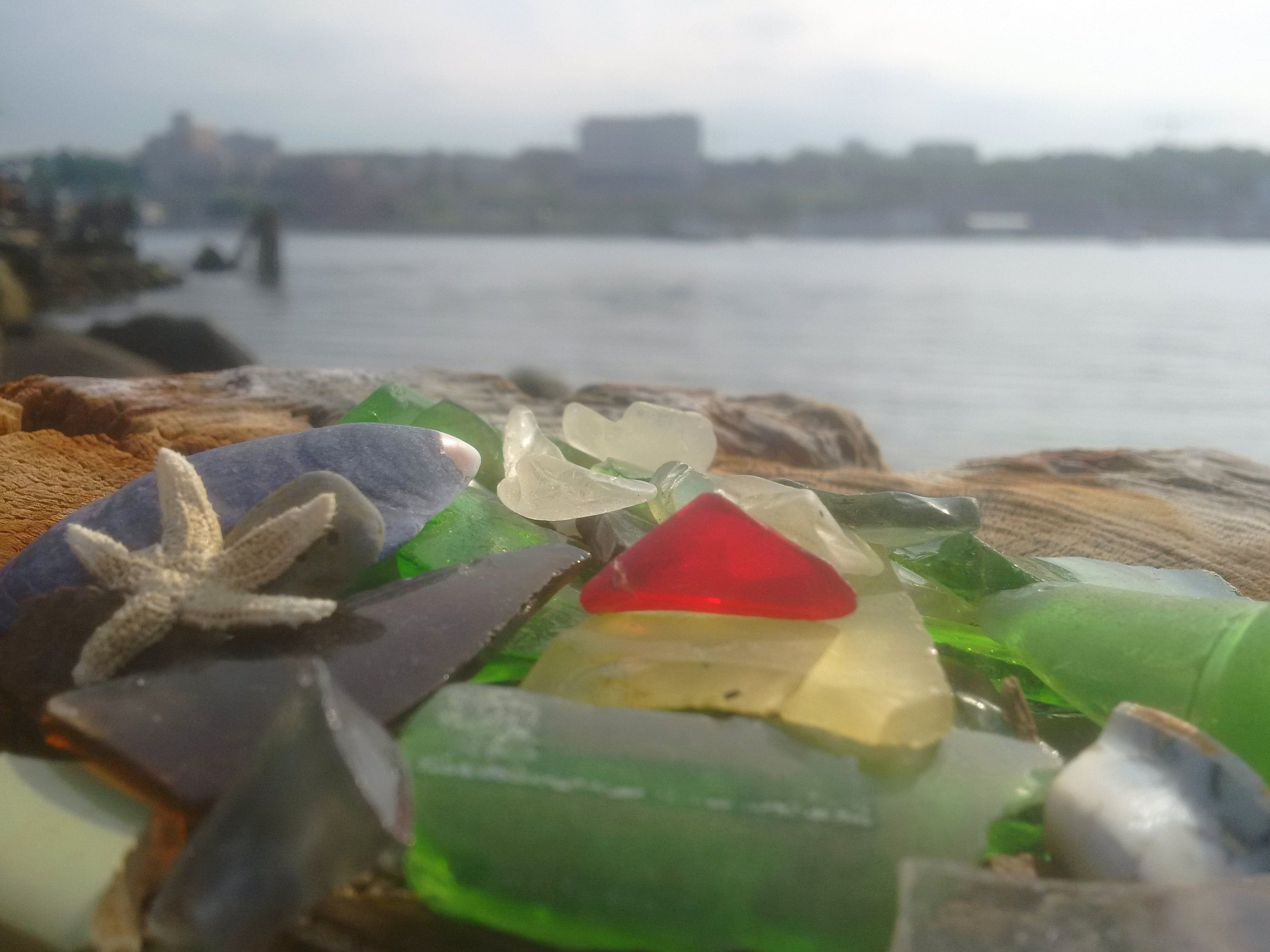 gathering sea glass in nova scotia