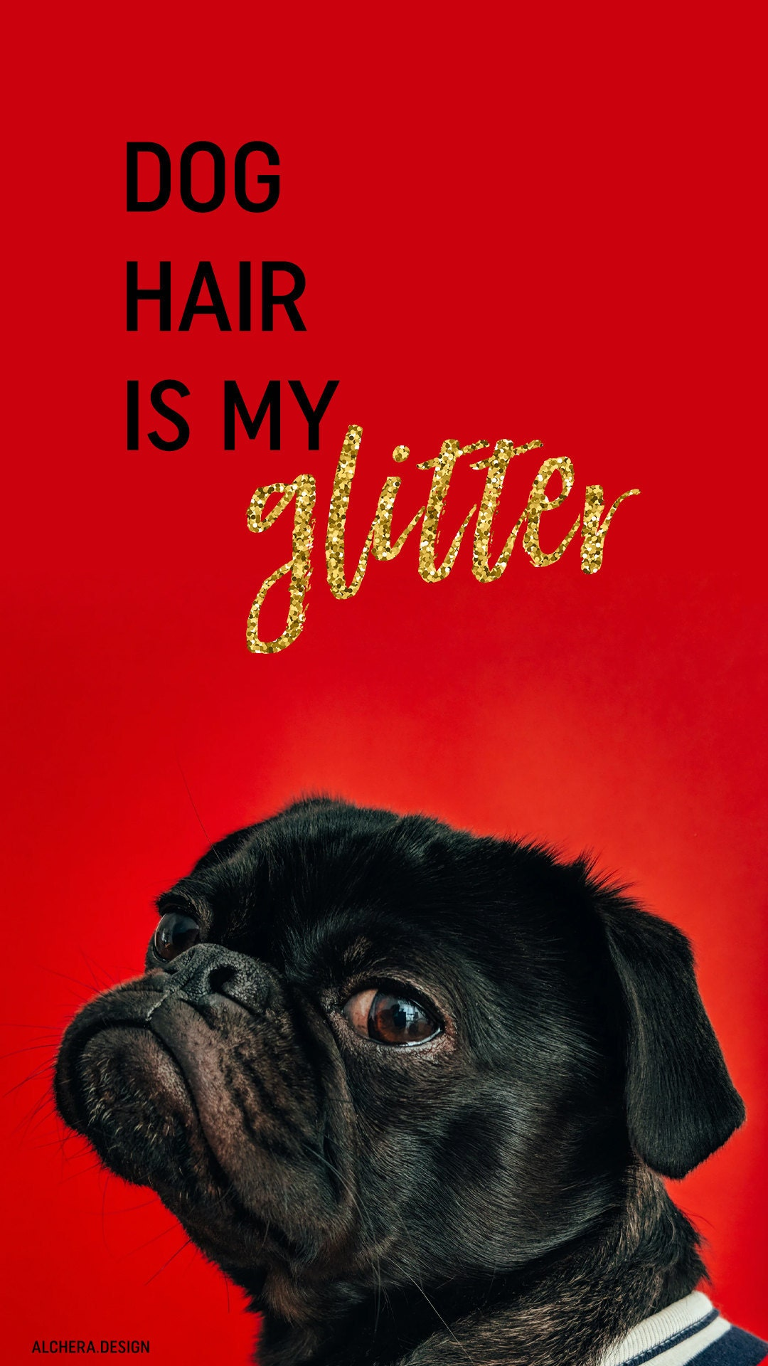 Dog hair is my glitter.