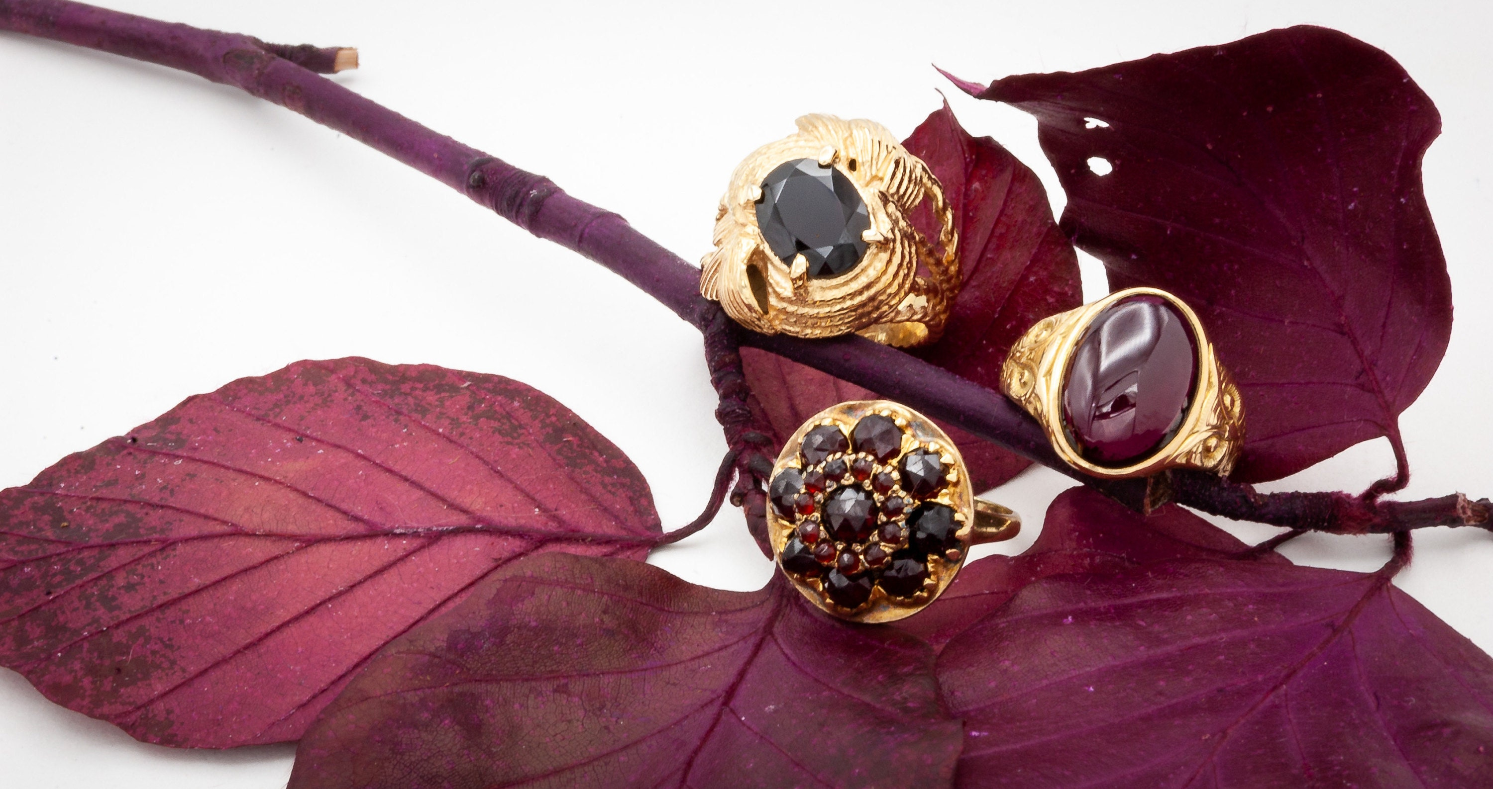 Vintage Garnet Gold Rings with Cabochon and propped on red wine colored leaves and branch