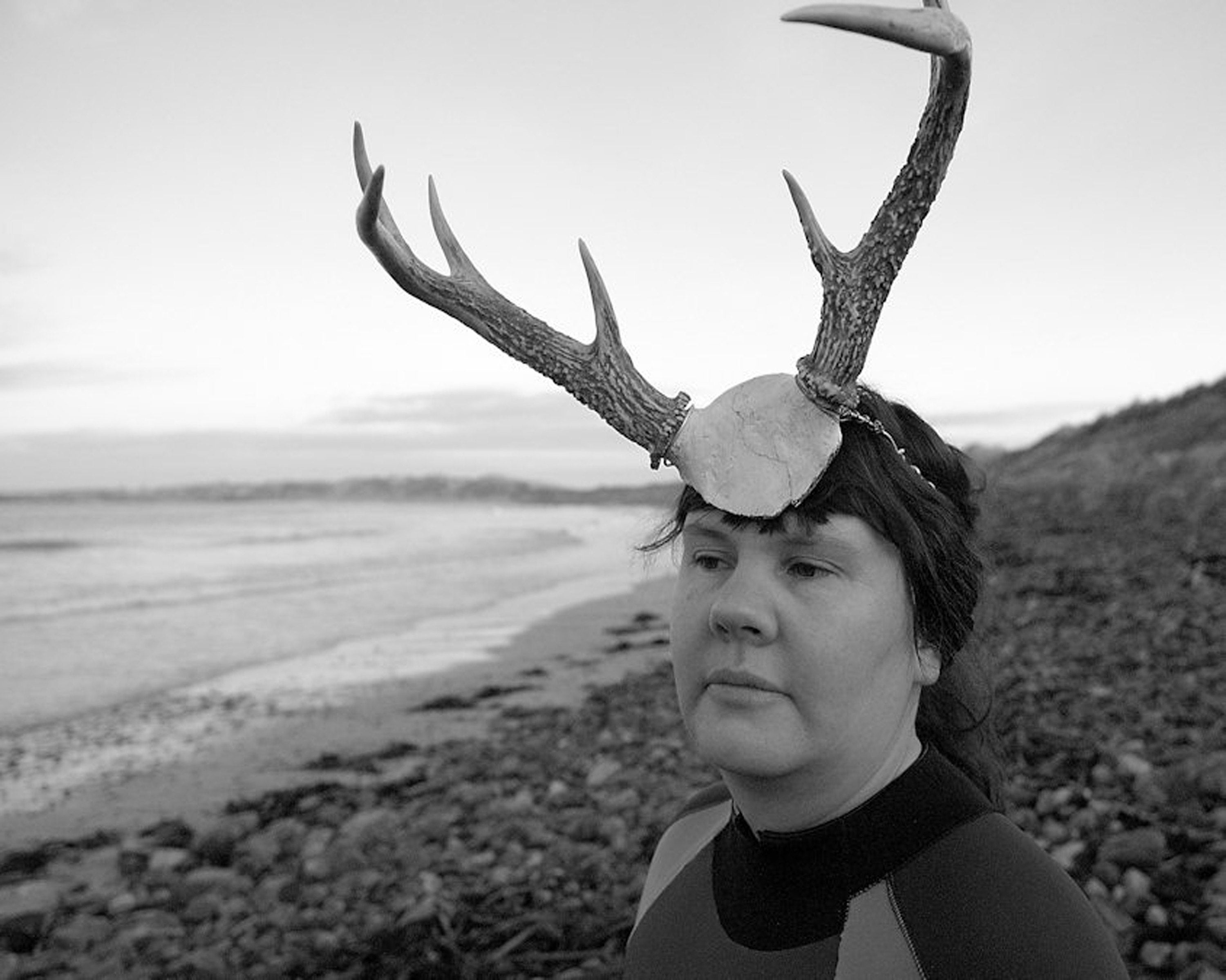 Stag in the sea