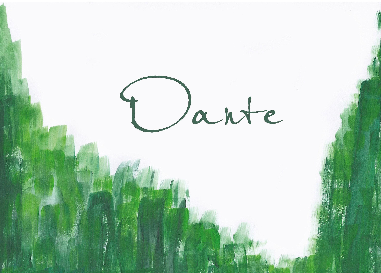 Geboorte kaartje Danten