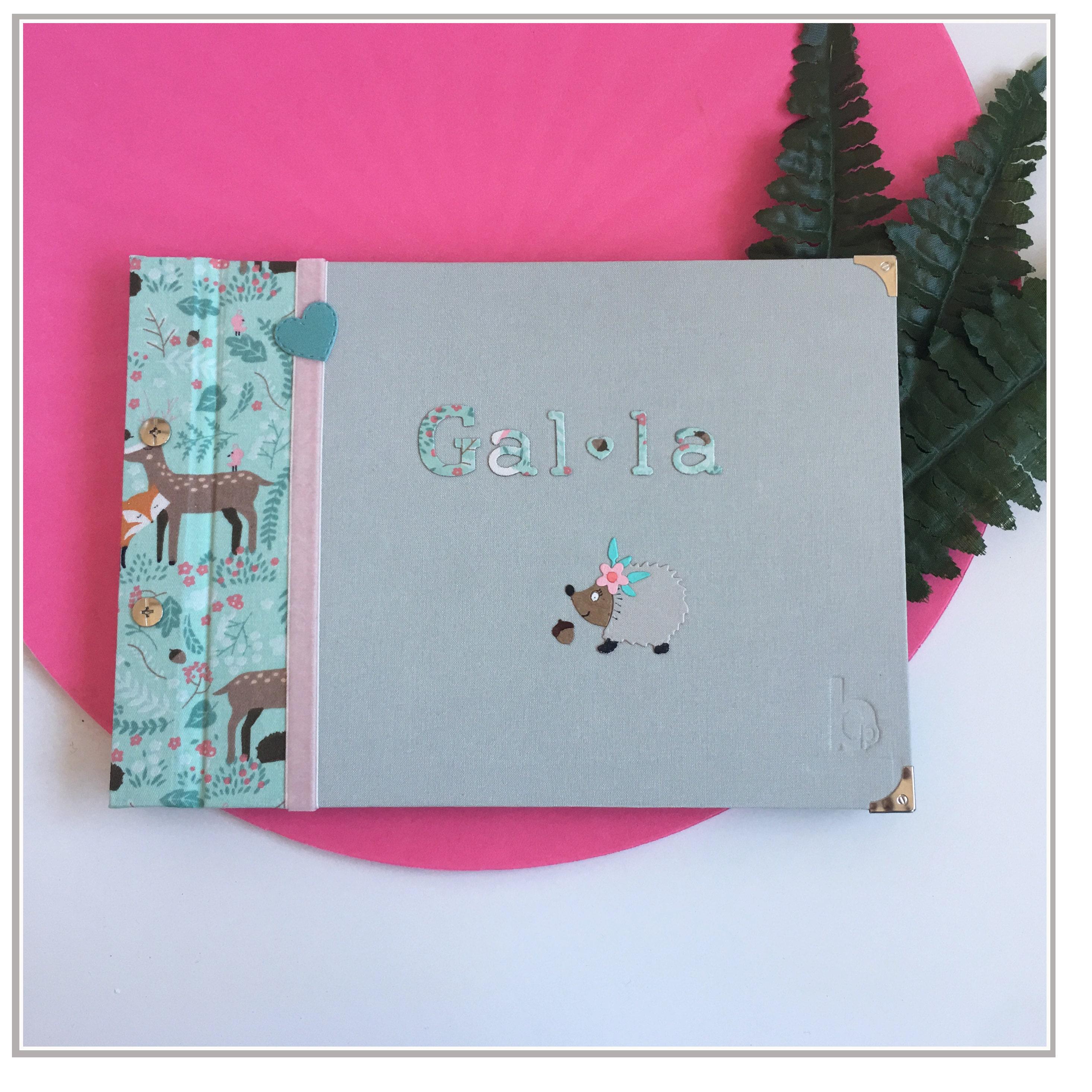 Álbum con erizo en tonos rosa y agua marina