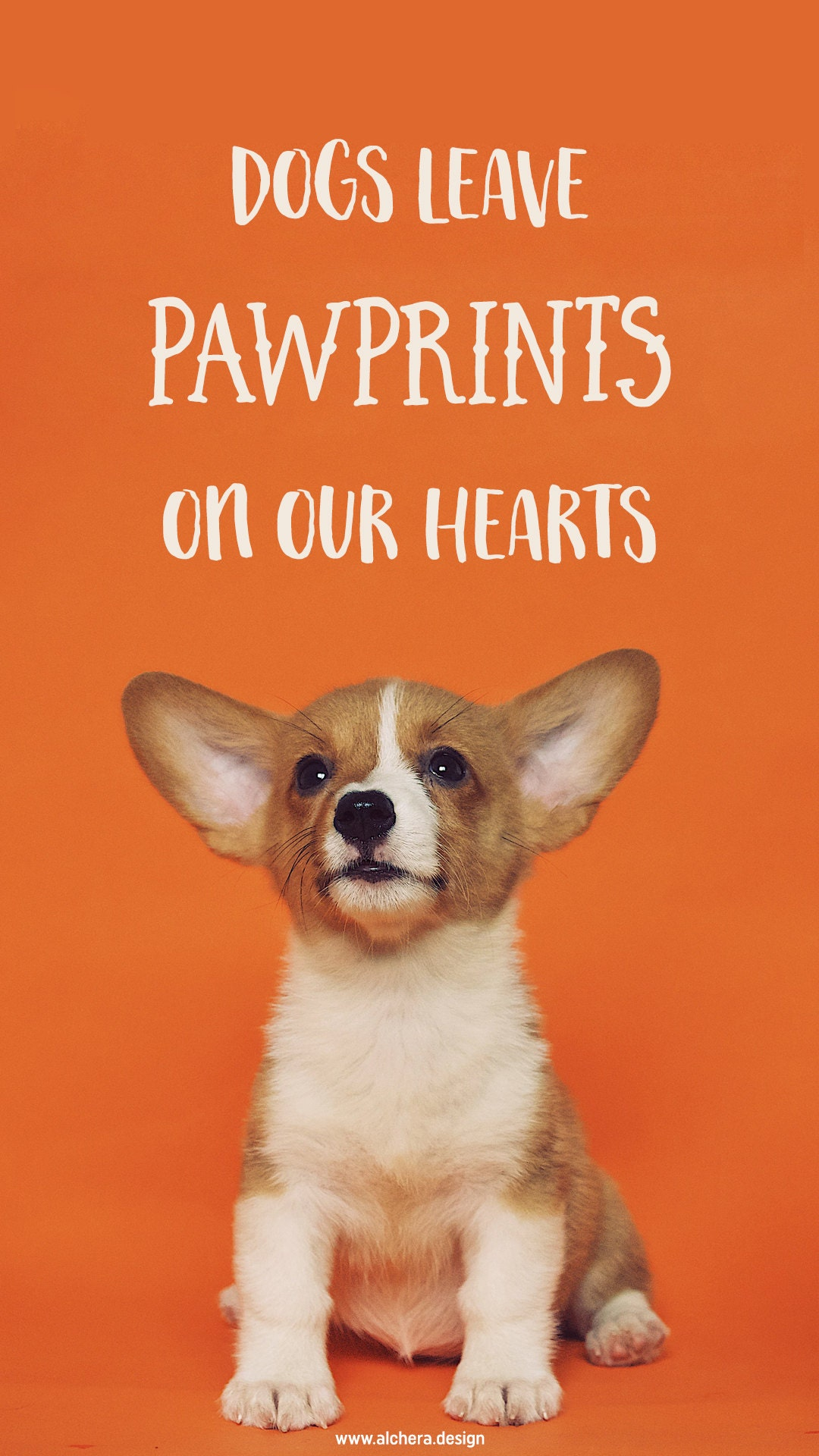 Dogs leave paw prints on our hearts.