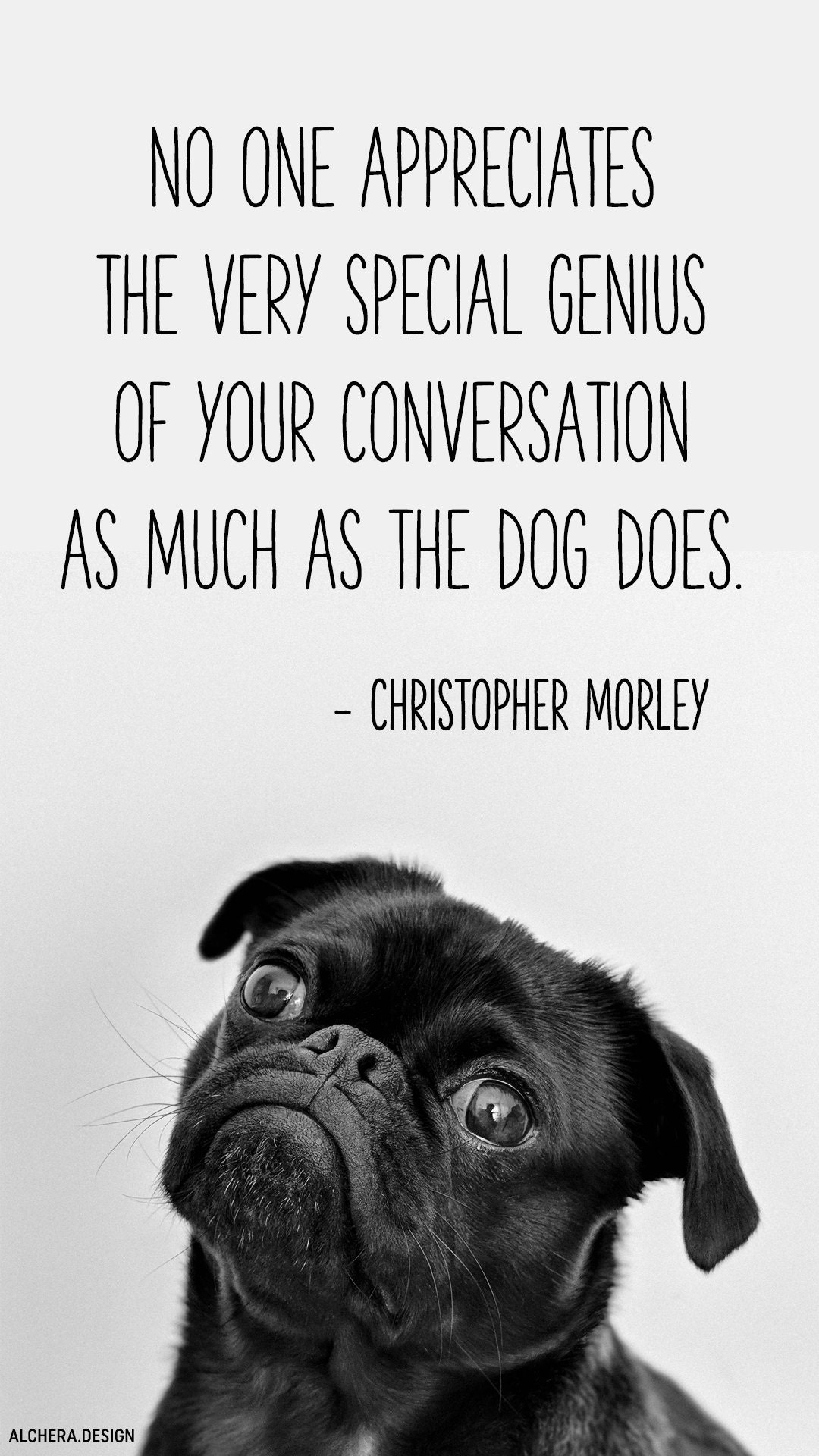 No one appreciates the very special genius of your conversation as the dog does.