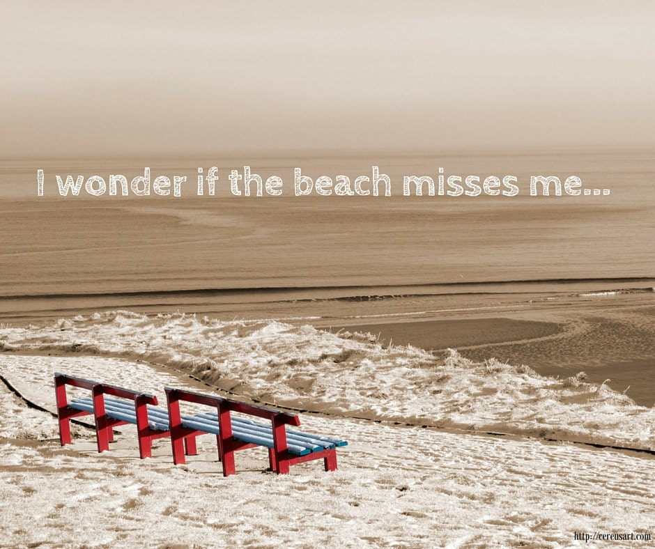 I wonder if the beach misses me