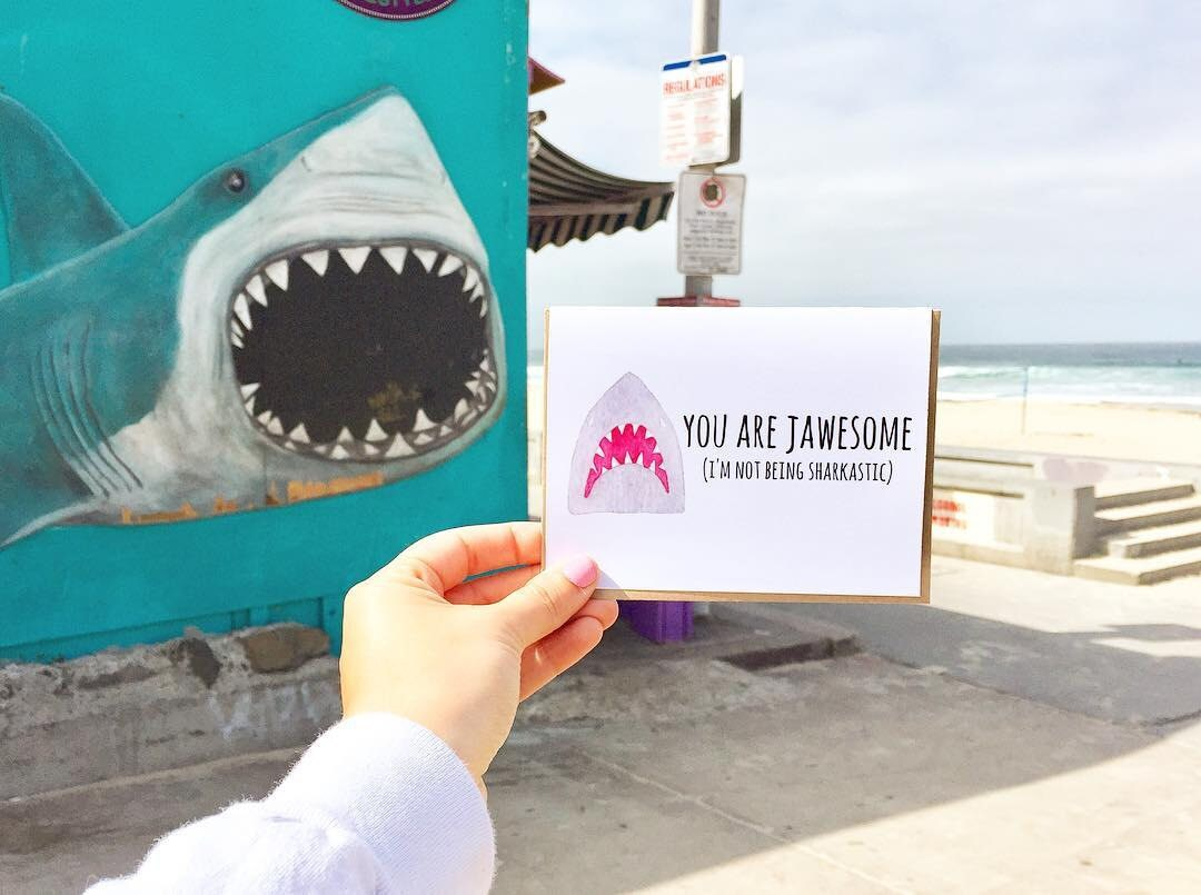 shark week, shark gift, funny travel blog, travel blog, punny blog, puns, acouplepuns, shark gift, san diego blogger