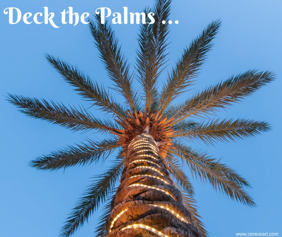 Deck the palms