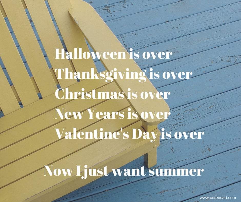 Halloween is over.  Thanksgiving is over.  Christmas is over.  New Years is over. Valentines Day is over.  Now I just want summer