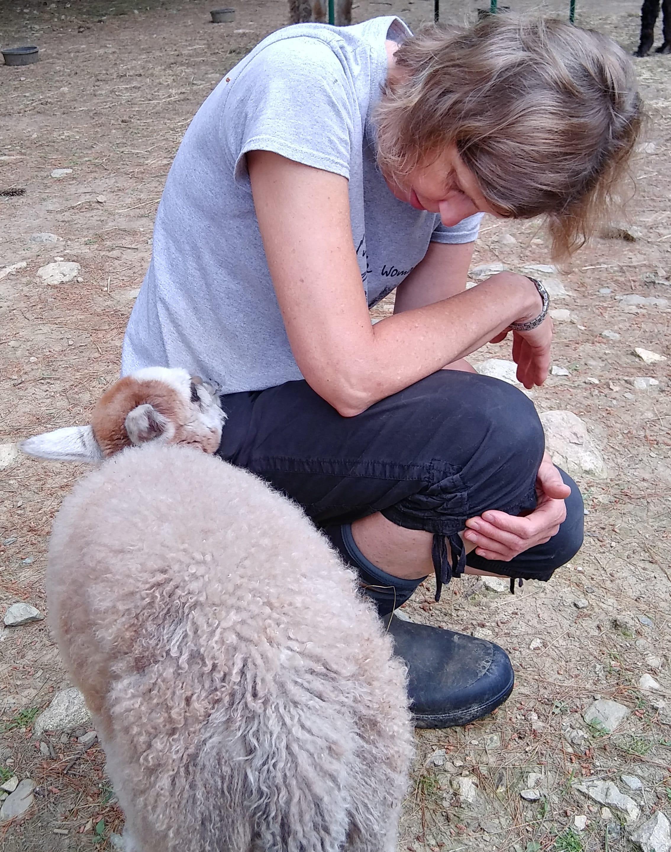 Karen Borgstein with baby alpaca Destiny
