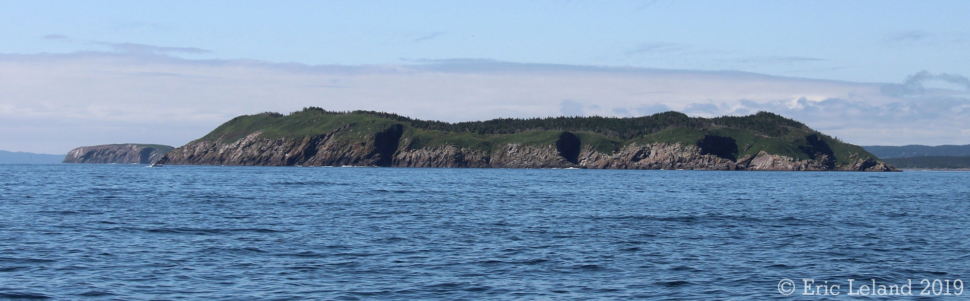 Gull Island, NL