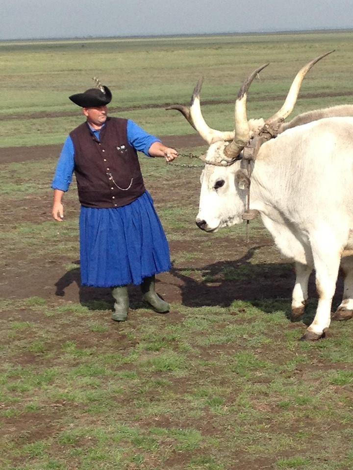 Traditional Hungarian Shepherds on the Hortobágy National Park