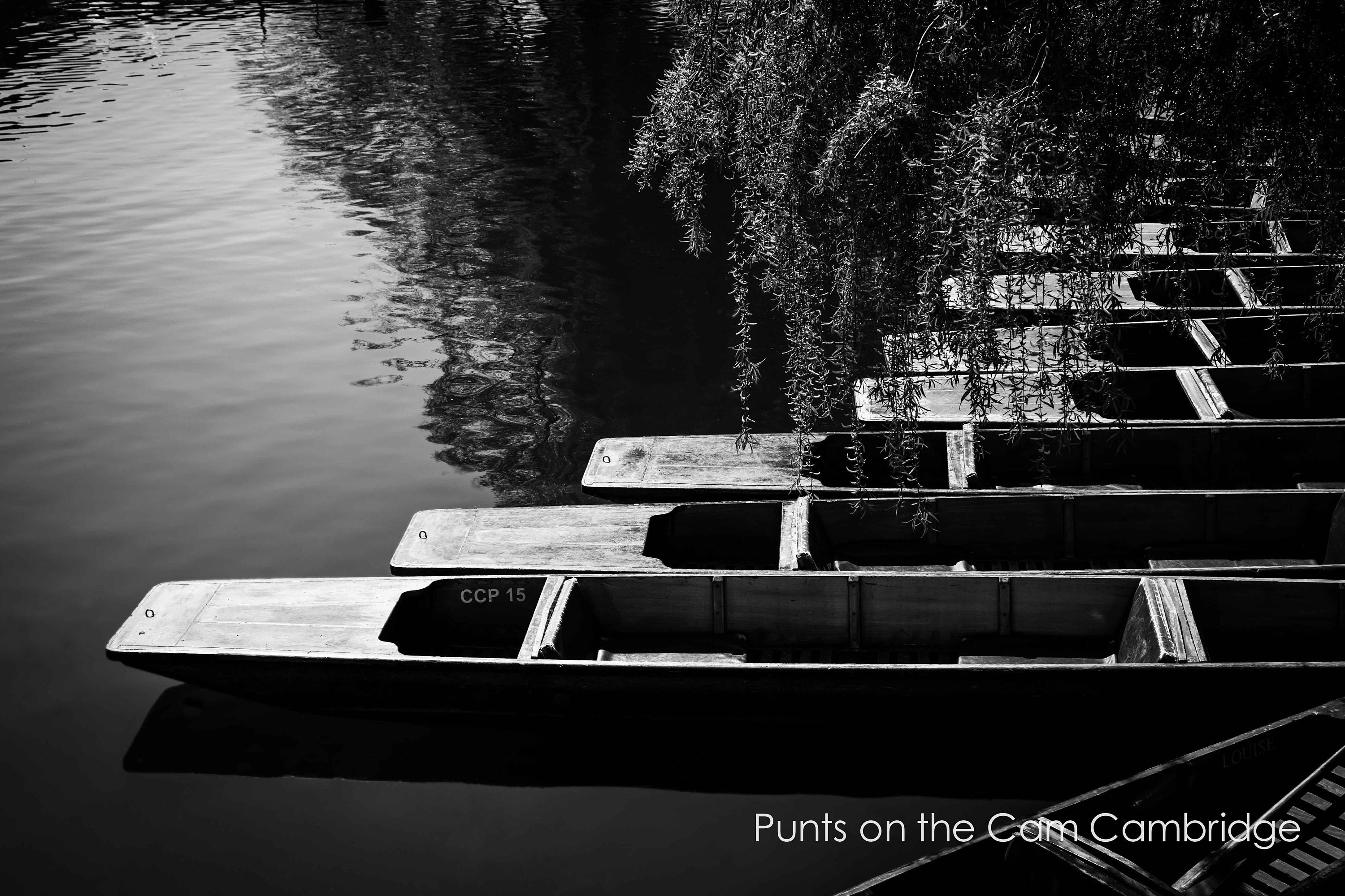 black and white prints of punts on the river cam in cambridge available unframed or ready to hang in custom sizes