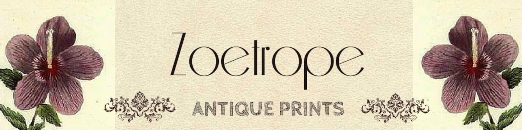 Antique prints maps engravings vintage von zoetropeantiqueprint