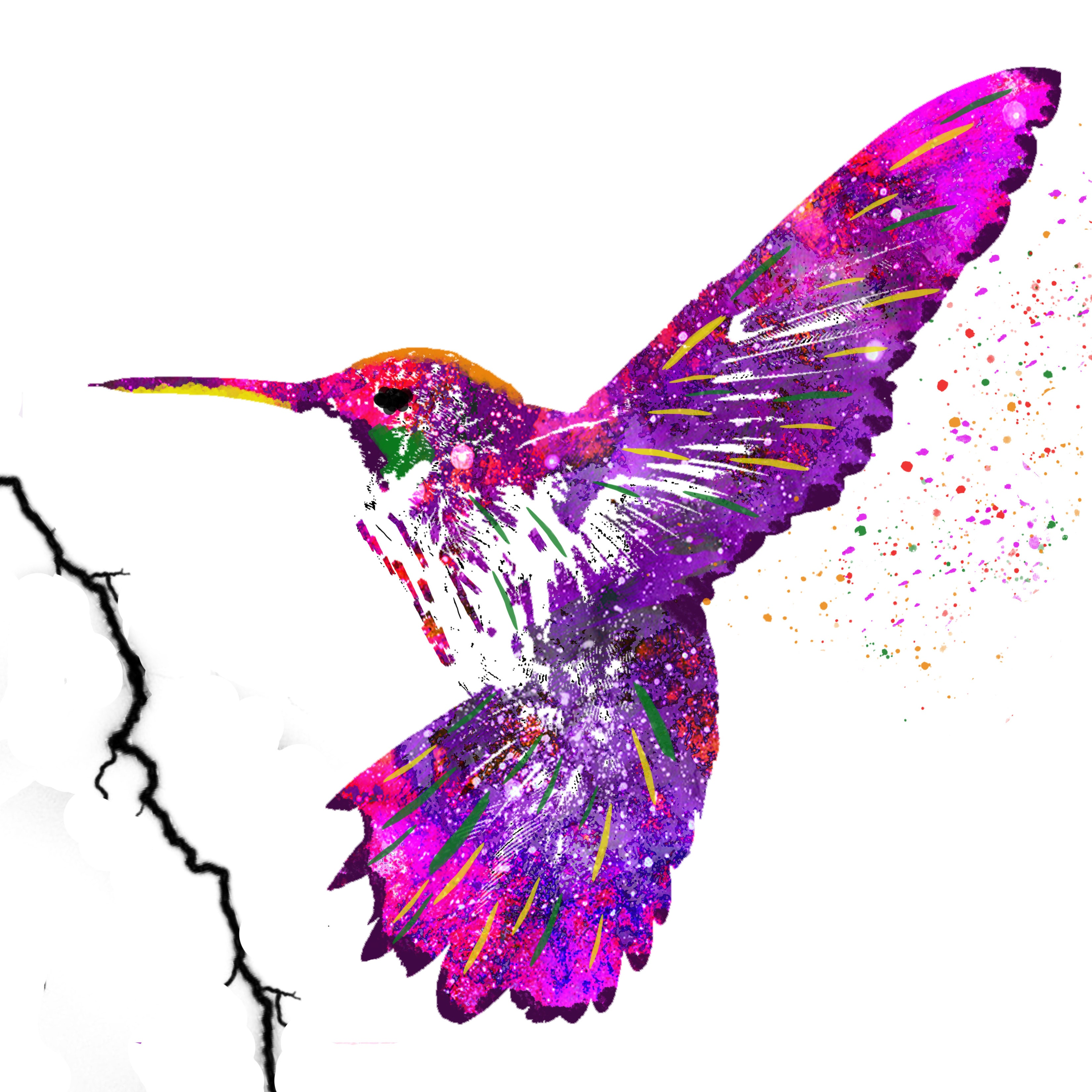 Colorful Human Brain WaterColor Art Print .... Anatomy Lateral | Etsy