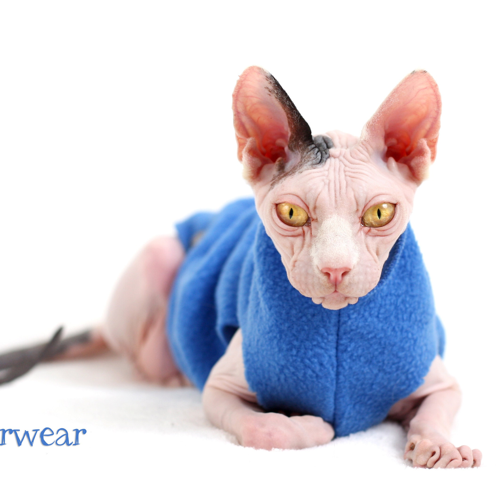 PurrWear PurrFect for all your Feline Needs by PurrWear on Etsy