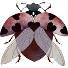 BeetleRoyale